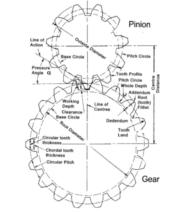 Involute Diagram - Wiring Diagrams ROCK