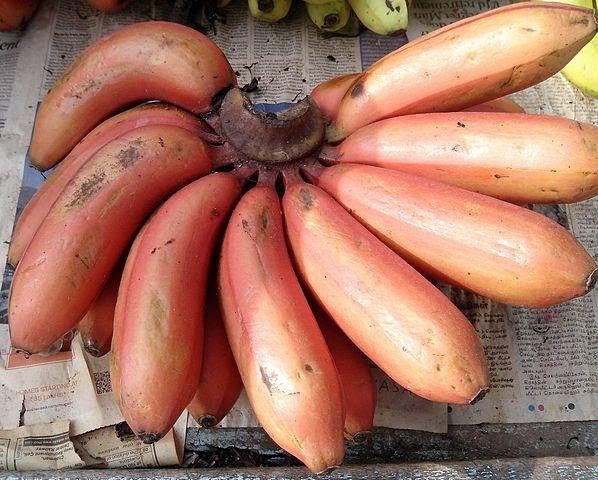Why are red bananas considered healthier than other bananas? - Quora