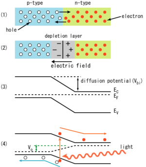 Does a solar cell produce forward biased or reverse biased