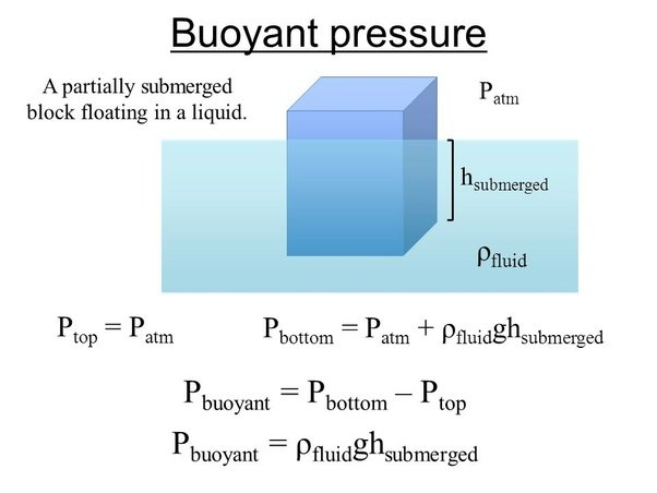An Object In A Fluid Will Sink If Does The Buoyancy Force