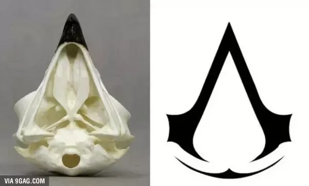 What Does The Assassins Creed Insignia Mean Quora