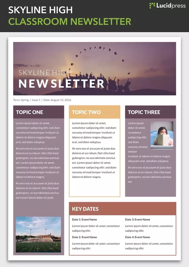 what are the best websites for email newsletter design