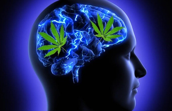 What Happens To You And Your Brain When You Smoke Weed