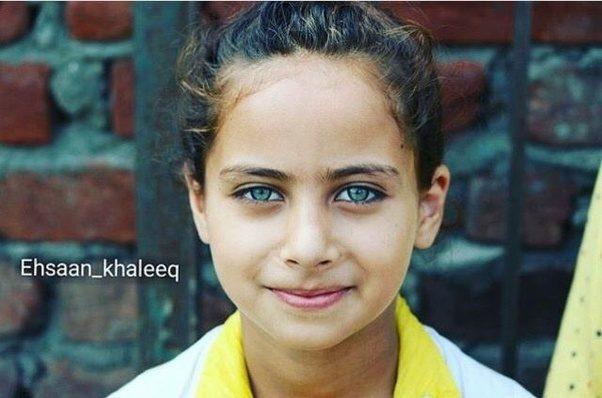 Kashmiri Eyes What is the percentage...