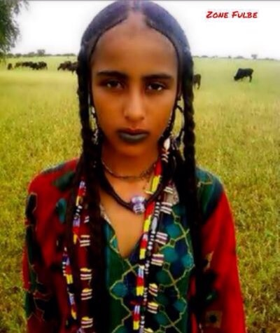 What are the differences, if any, between the Fulani and the Hausa
