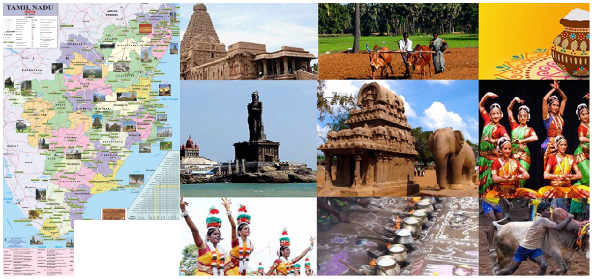 tourism industry in tamilnadu