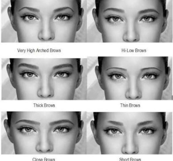 How To Achieve The Best Eyebrow Shape For My Face Quora
