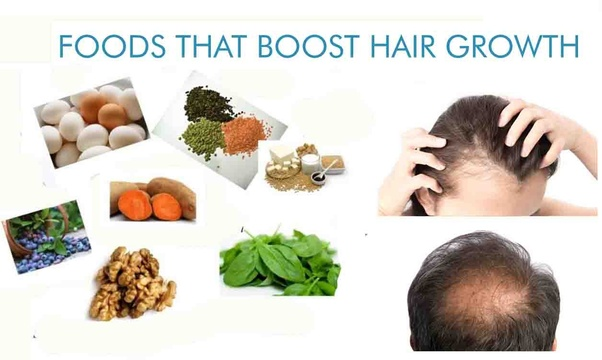 What are the food habits for healthy hair growth and to stop hair fall? -  Quora