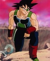 What is the relationship between King Vegeta and Bardock ...