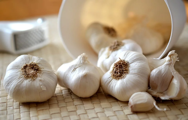 What Are The Health Benefits Of Chewing Raw Garlic Quora