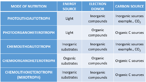 How Do Chemoautotrophs And Chemoheterotrophs Differ Quora