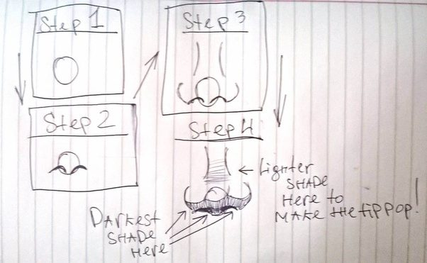 how to draw a nose quora