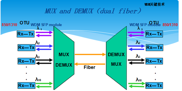 What is DWDM and how does it work in an actual network