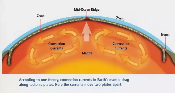 After Pangaea Broke Up The Earth Witnessed Continental Drifts And See The Present Set