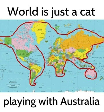 What does the world actually look like quora world actually look like just a cat playing with austarli gumiabroncs Image collections