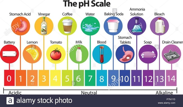 What does pH stand for? - Quora