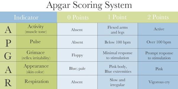 Who Invented Apgar Scores Quora