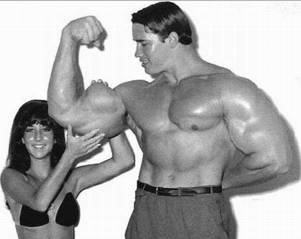 How should i increase the size of my biceps quora 1 shoulders matter for bicep growth altavistaventures Choice Image
