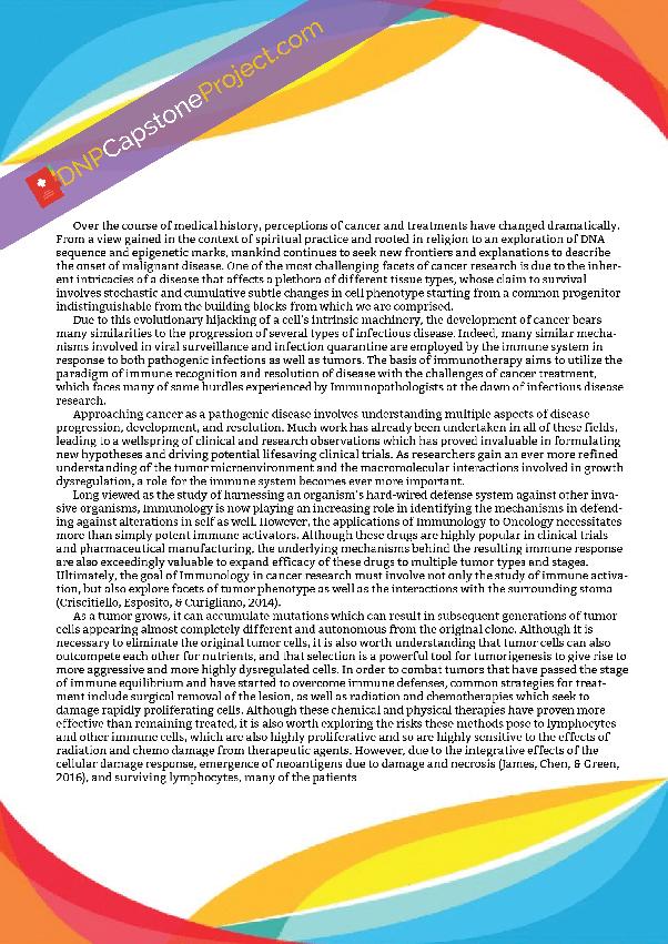 example capstone project