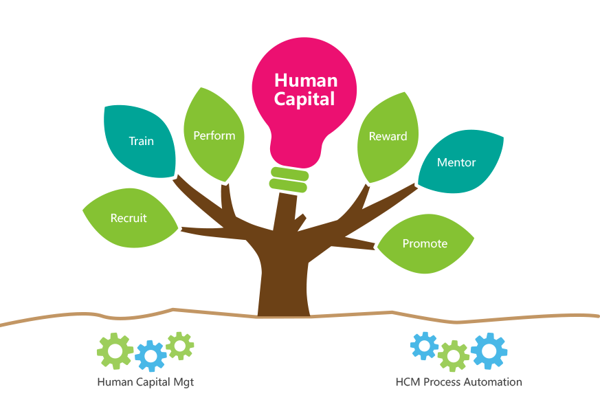 Which is the best human resource management system? - Quora