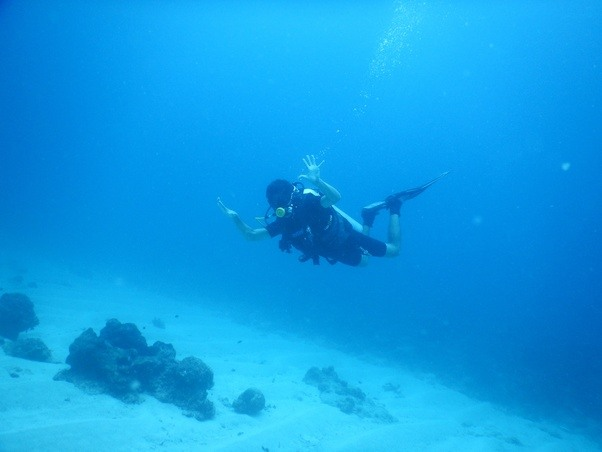 I wish to learn scuba diving in India but the cost is too high. Are ...