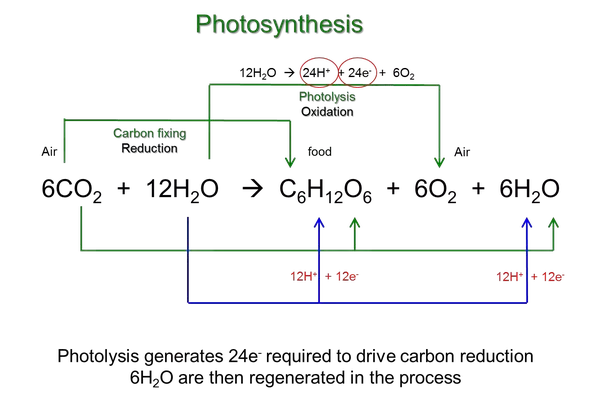 How to write the chemical equation for plant photosynthesis quora how do you write the chemical equation for plant photosynthesis ccuart Gallery