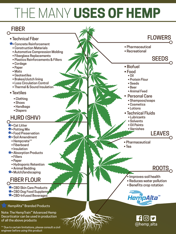 What are the uses for hemp? - Quora