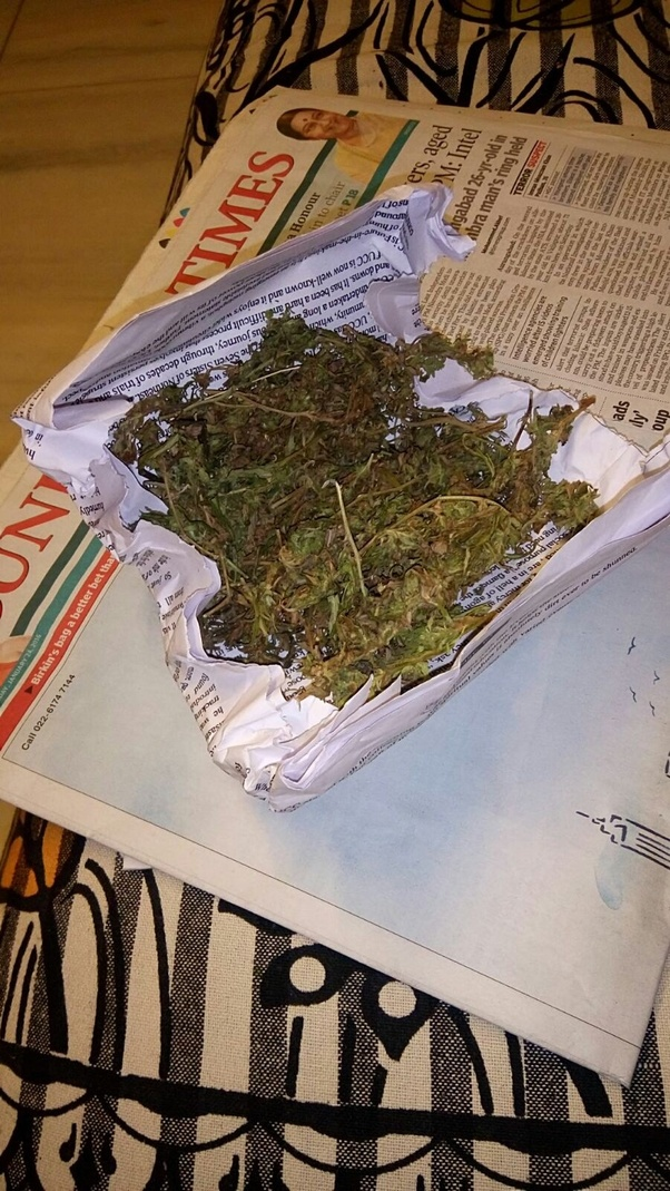 How to take a small packet of weed with me on a plane - Quora