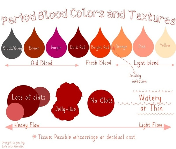 Is period blood the same as regular blood that's in our bodies? - Quora