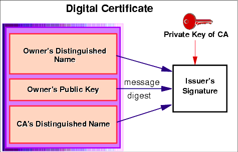 What are digital certificates? How are they created? - Quora
