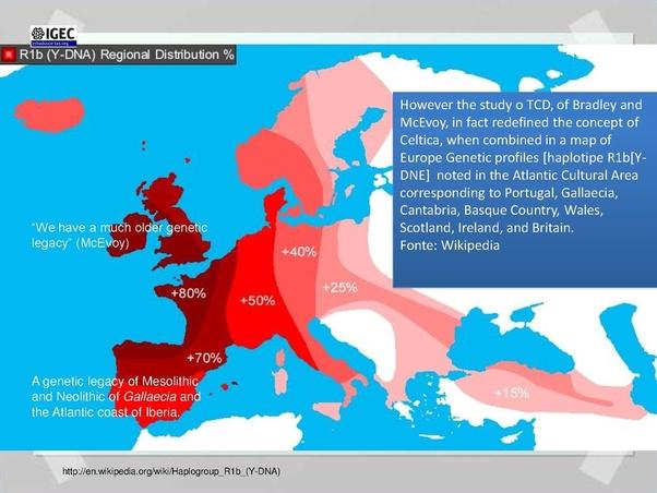 Are Portuguese Celts? - Quora