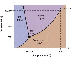 What is the order of the critical temperature of the ...