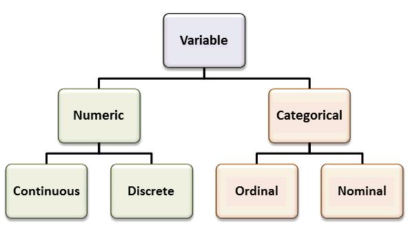 Data display and summary