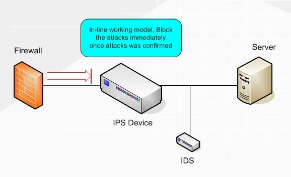 how does an intrusion prevention system  ips  work