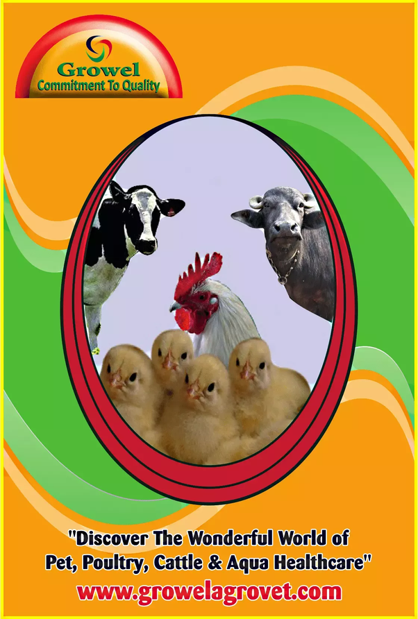 I want to open a poultry farm in India  What is some