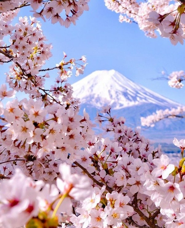 Beautiful Places In Japan Tumblr: Where Are The Most Beautiful Places In Japan, And Why?