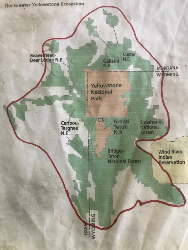 how big is the yellowstone national park
