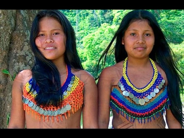 What is the difference between an Andean Native American and