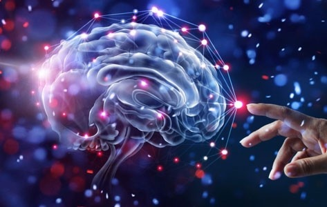 What are the top paying careers in neuroscience? - Quora