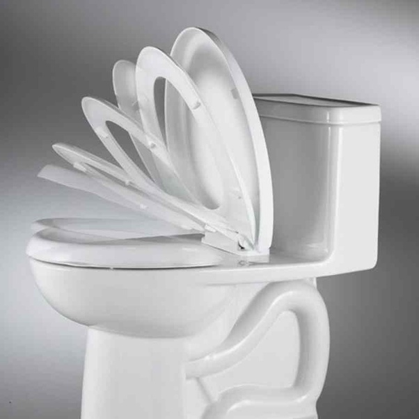 Strange Women Only Sit On A Toilet Men Sit And Stand Putting Evergreenethics Interior Chair Design Evergreenethicsorg