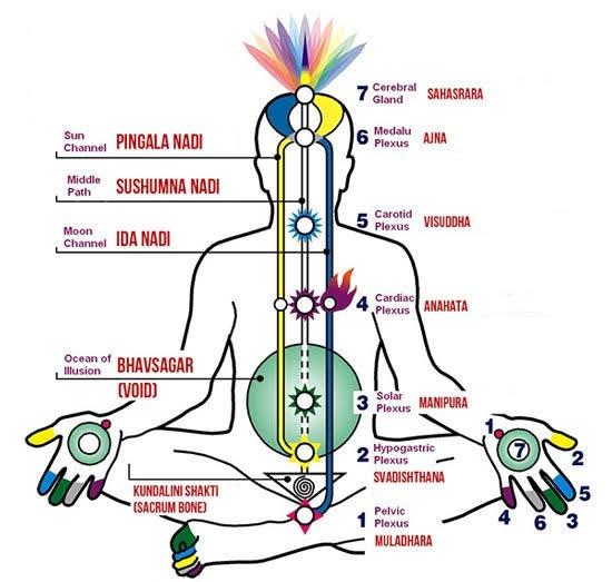 What happens when your Kundalini is awakened? - Quora