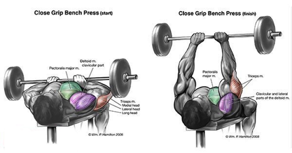 Pleasant What Exercises Will Help Increase Bench Press Quora Gamerscity Chair Design For Home Gamerscityorg