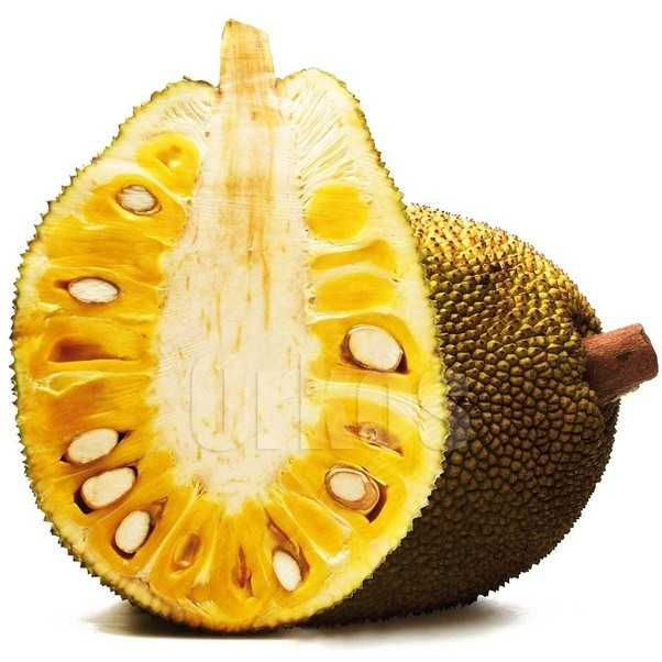 what is a list of fruits with many seeds? - quora