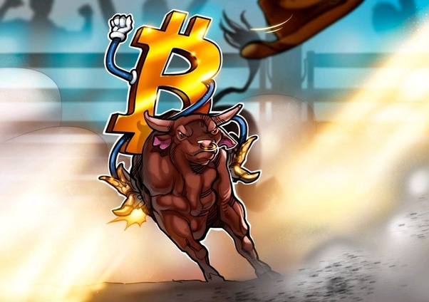 bitcoin lizdas