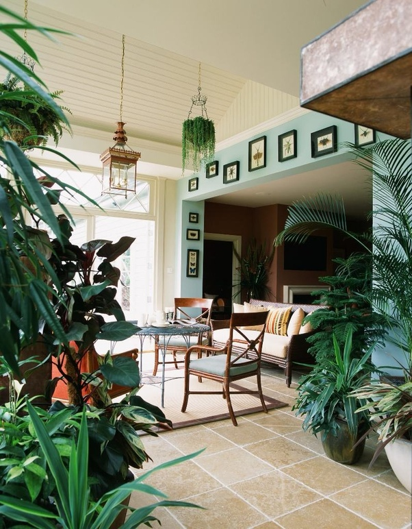 A Living Room Fully Decorated With Indoor Plants And Stickers Of Plants (if  ...