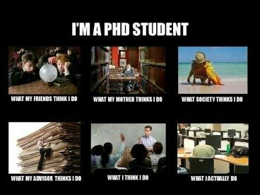 Phd writing