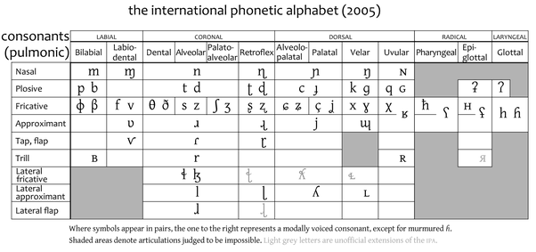 What Is The Usefulness And Necessity Of The International Phonetic