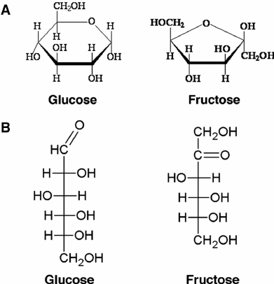 another difference is that in glucose the anomeric carbon is the first carbon whereas in fructose the anomeric carbon is the second carbon