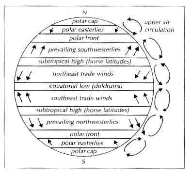 Global Wind Diagram Of Pattersn Auto Electrical Wiring Diagram
