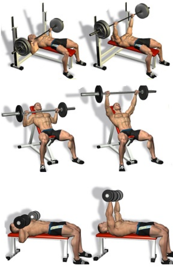 What is the best way to develop the inner chest line? - Quora